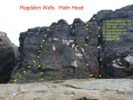 Magdalen Wall
